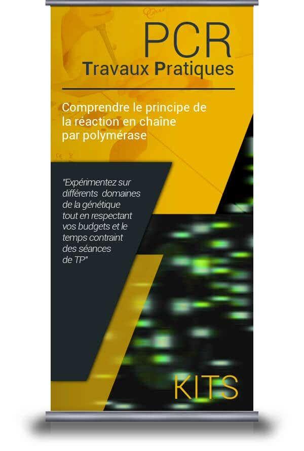 Travaux pratiques sur la PCR