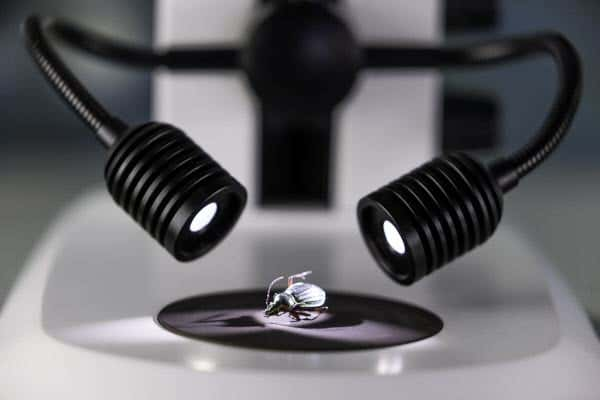 Stemi 305 - Eclairage en réflexion - spots autoportants